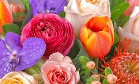 You can easily go back to see how many flowers you've identified. Florist Atlanta Flower Delivery Atlanta Ga Carithers Flowers