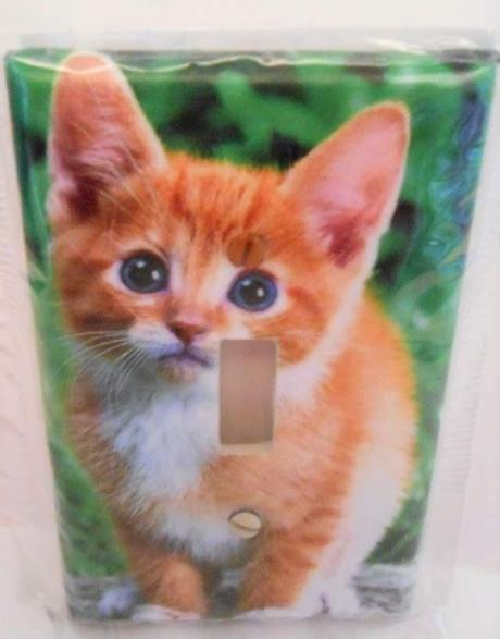 Browse our orange kittens images, graphics, and designs from +79.322 free vectors graphics. Free: Adorable Orange Tabby Cat/Kitten Single Light ...