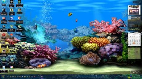 2560x1600 animated animal hd wallpapers : Free Full Screen Animated Wallpaper - WallpaperSafari