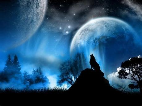 Available 107 hight quality live wallpapers, hd animated wallpapers. Anime Wolf Wallpapers - Wallpaper Cave