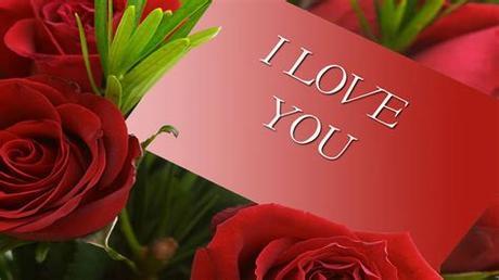 ❤ get the best wallpaper flower rose love on wallpaperset. Wallpaper Flower Rose Love (42+ pictures)