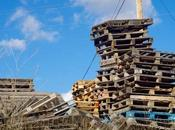 Wood Pallets Recyclable? (And They Good Firewood?)