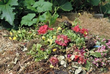 Can You Compost Flowers? (And Dead Flowers Too?)