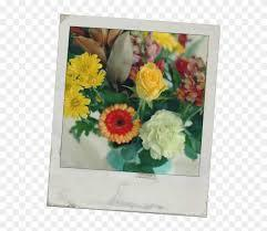 24 high quality download flower image in different resolutions. Happy Friday All Flowers Polaroid Bouquet Hd Png Download 553x650 3526410 Pngfind