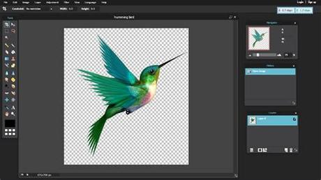 Are you a designer or business that needs to edit thousands of images at once? How To Make Your Picture Background Transparent By Using ...