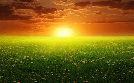 See more ideas about nature backgrounds, nature, photo. wallpaper: Dream Nature Wallpapers