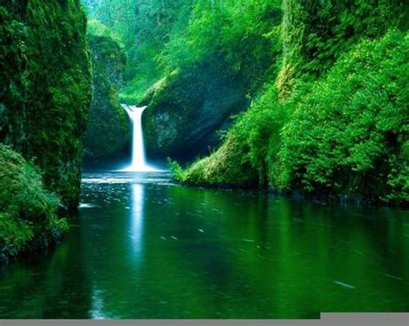✓ free for commercial use ✓ high quality images. Free Nature Backgrounds Pictures - Wallpaper Cave
