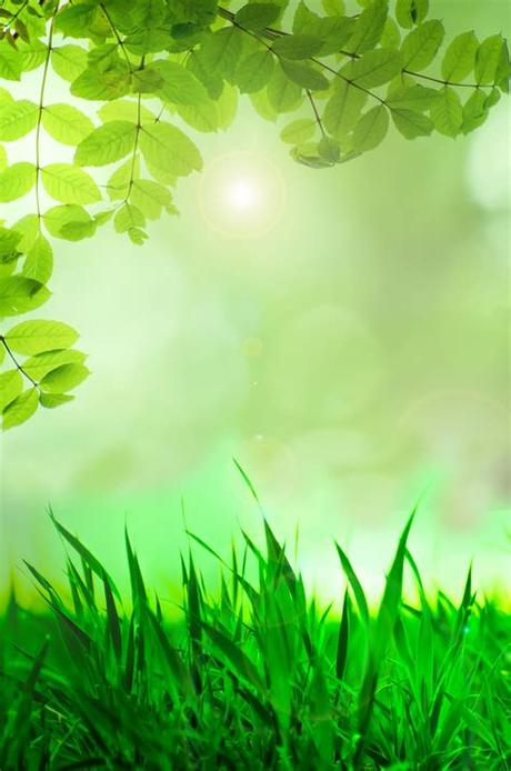 Looking for the best wallpapers? Natural Green Background Free Stock Photo - Public Domain ...