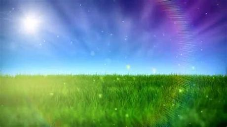 Background design resources · iphone, zoom backgrounds & desktop hd wallpapers. Free Nature Video BackGround - HD - YouTube