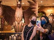 World's Only Harry Potter Flagship Store Welcomes Fans Through Doors First Time