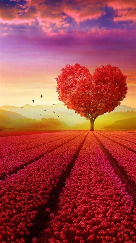 Posted by nadia gultom posted on februari 06, 2019 with no comments. Love Heart Shape Tree Flowers (With images)   Love ...