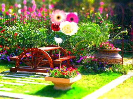 Color chart available for all files. Flowers HD Wallpapers 2013