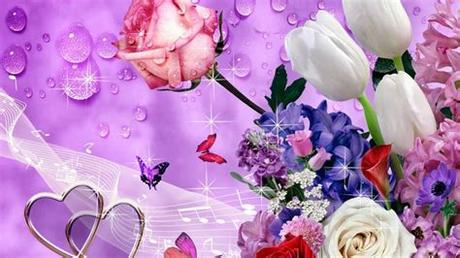 Hd to 4k quality, all free for download! Images of flowers/flowers images free download/Beautiful ...