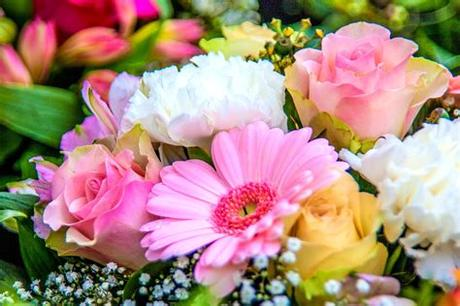 Happy birthday flowers images free download for. Birth Month Flowers and Meanings | What Is Your Birth ...
