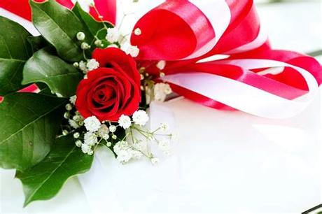 Are you searching for birthday flowers png images or vector? Red Rose Flower on White Surface · Free Stock Photo