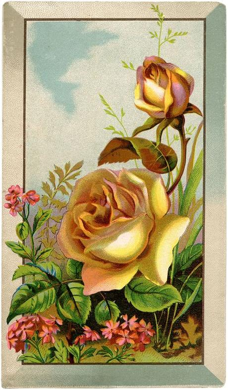 Find images of birthday flowers. Free Roses Digital Download! - The Graphics Fairy