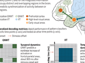 Making Hard Problem Consciousness Easier