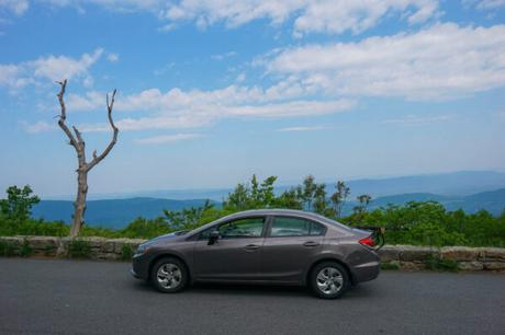 Get the Most Out of Skyline Drive in Shenandoah National Park
