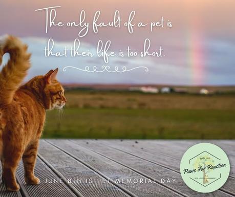 June 8th is Pet Memorial Day