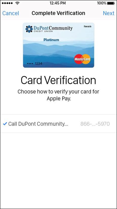 Go to the wallet app and tap the apple pay cash card. Verify card for apple pay MISHKANET.COM