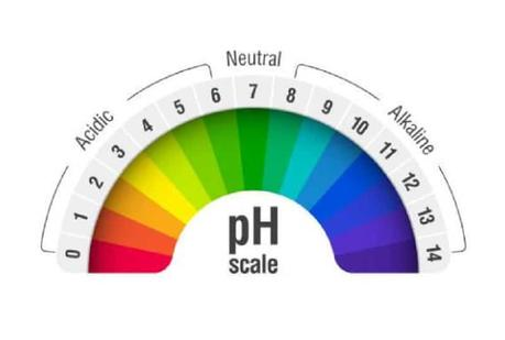 PH Level of Drinking Water – Everything You Need to Know