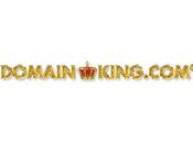 Rick Schwartz Wins Greatest Domain Investor Time Dual Polls