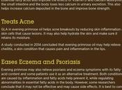 Evening Primrose Oil: Benefits, Side Effects Dosage