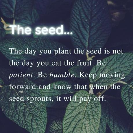 May be an image of text that says 'The seed... The day you plant the seed is not the day you eat the fruit. Be patient. Be humble. Keep moving forward and that when the know seed sprouts, it will pay off.'