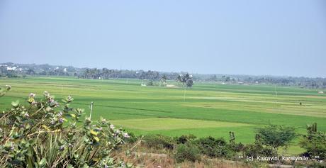 Ancestral village Dusi (Mamandur)  100 years ago !  ~ a historical perspective !!