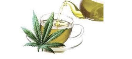 Cannabis- A Sought After Natural Resource To Promote a Healthy Lifestyle