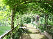 Your Garden Should Best Hangout Spot Street