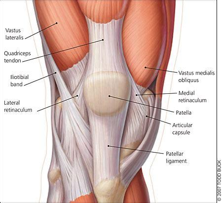 A high ankle sprain is less common in everyday life but can be seen in competitive athletes. What is a Retinaculum?