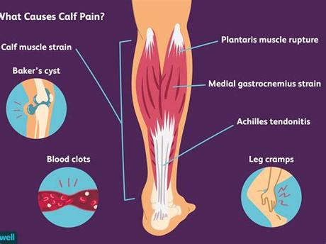 Step your feet together and then take another step to the right, repeating the same steps. Left Leg Ligaments : Collateral Ligament Cl Injury ...