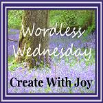 Wordless Wednesday - Meet my new friend