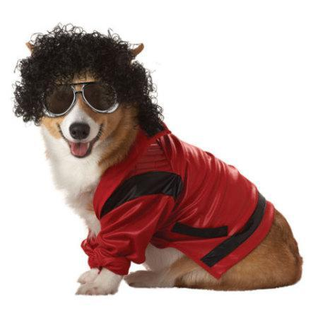 12 Best Halloween Costumes For Pets 2012: Funniest, Prettiest, Cleverest And More...