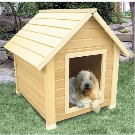 Eco Day Dog House Designs And Which Would You Choose