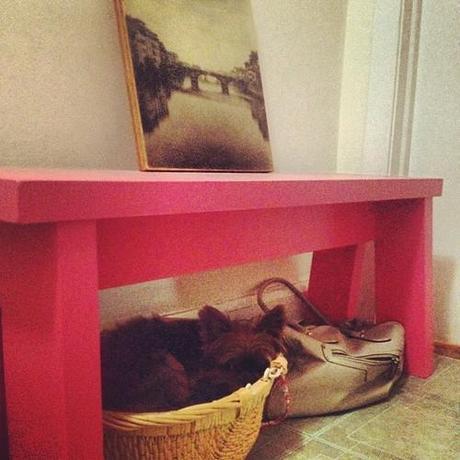 Someone is sleeping in my bikini basket. (Taken with Instagram)