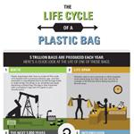 How Resuable Bags Will Replace Plastic Bags