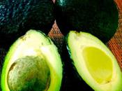 Ingredient Spotlight: Avocado