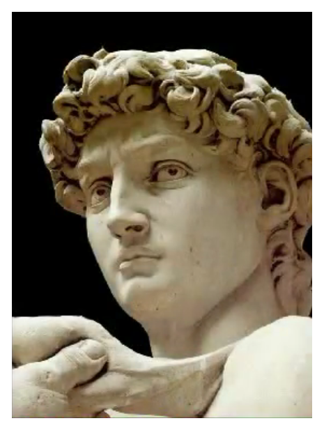 """michelangelos david a critique essay Quote investigator: qi has located no substantive evidence that michelangelo or any other great sculptor made this remark a comment of this type was published in 1858 in """"the methodist quarterly review"""" without any overt humor the essay discussed poetry, and the author compared the methods of."""