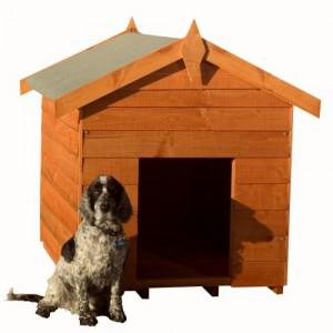 Dog Kennels – How to Choose the Right Option