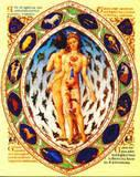 Herbs That Compliment Your Zodiac Sign ~Revised~