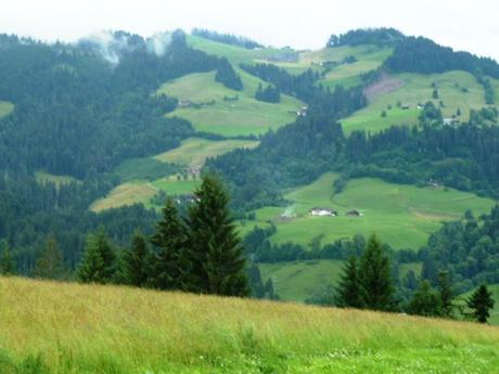We went on a couple of short walks in our down time, enjoying the beauty of Tyrol, Austria.