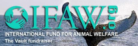 The Vault teams up with Kristin Bauer in support of IFAW