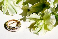 wedding photography by Ali Lovegrove