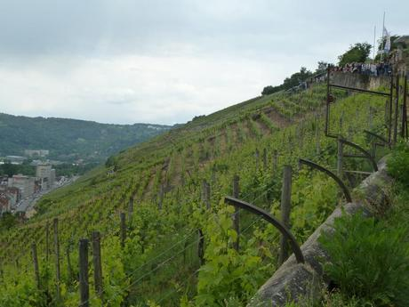 Esslingen Wine Walk