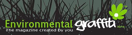The Presurfer And Environmental Graffiti