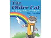 Care Aging Cats