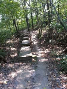 Murphy-Hanrehan Mountain Biking Trail