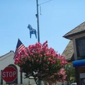 Kingsburg, CA 2